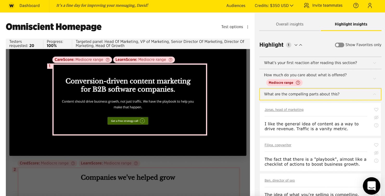 Website Messaging Areas